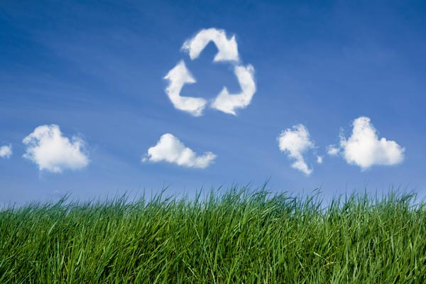 Recycling Services Surrey